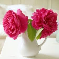 top 17 idei despre best flower delivery pe florării