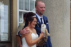gorilla radio wedding band owl hired to carry rings at worthing wedding more radio