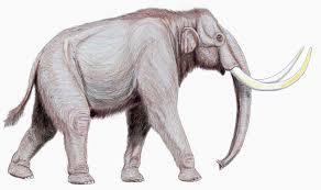 mammoth wikiwand