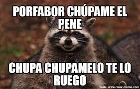 Sexo Meme - meme sexo entre animales memes en internet crear meme com