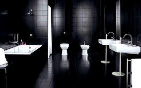 bathroom terrific bathrooms design ideas mariposa valley farm