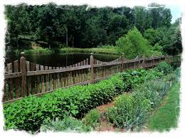 the gardening plan for 2012 natural path