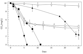 microorganisms free full text tetrachloromethane degrading