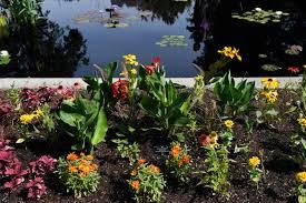 three new specialty gardens open at denver botanic gardens u2013 the