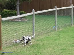 Backyard Fence Ideas Backyard Fences For Dogs Luxury Fence Backyard Fence Ideas Amazing