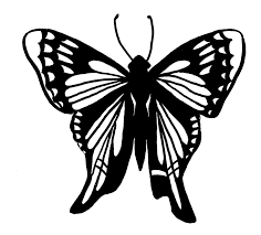 butterfly coloring pages free butterfly coloring pages tailed skipper butterfly