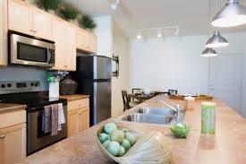 enlever odeur de cuisine comment se débarrasser des mauvaises odeurs dans la cuisine