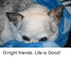 Life Is Good Meme - g night friends life is good meme on esmemes com