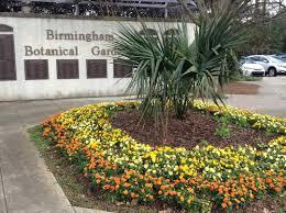 Botanical Garden Birmingham Planting Advice From Birmingham Botanical Gardens Wbrc