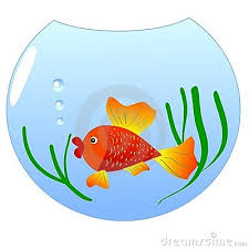 fish bowl clip art 75048