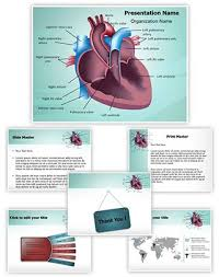 cardiovascular anatomy ventricle powerpoint presentation template
