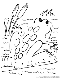 frog activity coloring page create a printout or activity