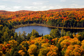what date is thanksgiving in canada 5 perfect places to watch the fall colours in canada