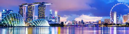travel tree group tours escorted singapore christmas lights tour
