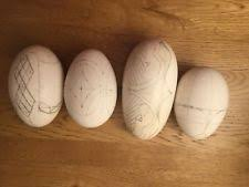 blown eggs decorating craft blown eggs ebay