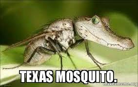 Texas Meme - texas mosquito make a meme