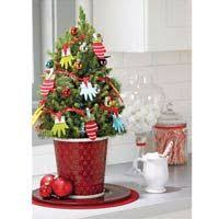 Pre Decorated Live Tabletop Christmas Trees by Merry Christmas Decorated Live Spruce Tree When Spring Arrives It