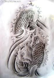 Meaning Of Koi - koi fish meaning tinymyers koi fish
