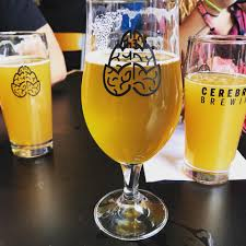 coppertail brewing co home facebook