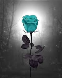 teal roses teal landscape wall decor photo surreal photography