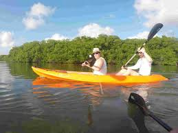 clear bottom kayak mangrove forest tour oranjestad aruba gopackup