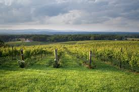 Ohio Winery Map by Wineries And Vineyards In North Carolina Ncwine Org
