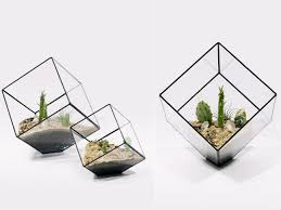 glass terrariums by score and solder