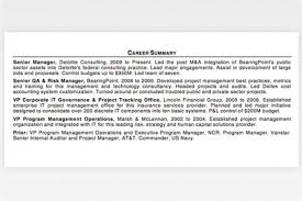 executive summary resume exles professional summary sle new executive summary resume exles