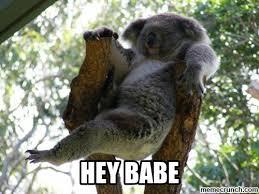 Hey Babe Meme - babe
