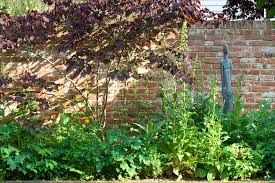 Secret Garden Wall by That Old Bucolic Thing Jo Thompson