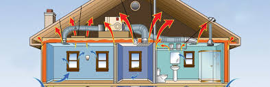 is my energy efficient home encouraging mold growth