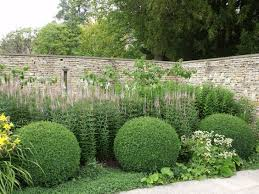 13 best topiary images on pinterest landscaping ideas topiary