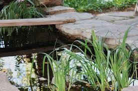 easy and awesome landscaping ideas diy ultimate guide