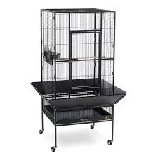 prevue pet products park plaza large bird cage hayneedle