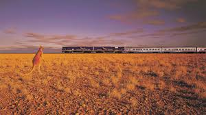 indian pacific train from sydney to perth tourism australia