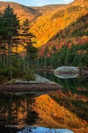 fall foliage print winner june england fall foliage