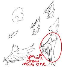 animal drawing tutorial how to draw how to draw wings
