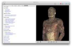 anatomy test online images learn human anatomy image