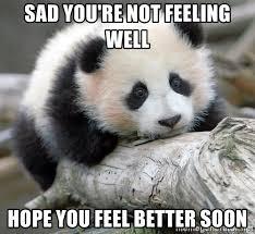 Feel Better Meme - hope you re feeling better meme you best of the funny meme