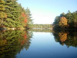 23 best loon lake kejimkujik images on thanksgiving