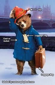 paddington bear bear costume paddington bear bears