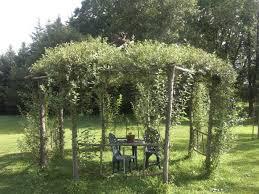 willow gazebo 26 best tree branch gazebo images on pinterest garden arbor