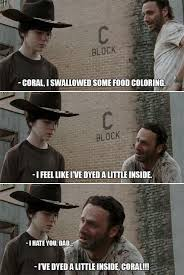 Memes Of The Walking Dead - 31 of the best dad jokes told by walking dead s rick grimes thechive