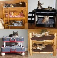 Bunk Bed For Dogs 352 Best Dog House And Other Cool Stuff For Your Dog Images On