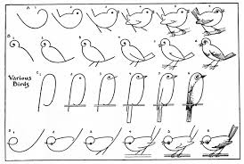 kids printable draw some birds 2 the graphics fairy