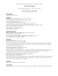sample resume for 1l law student professional resumes example online