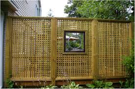 backyards mesmerizing fencing outstanding bamboo privacy screen