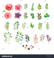 Wedding Flowers Drawing Vector Floral Set Colorful Floral Collection Stock Vector