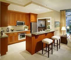 Modern Kitchen Set Kitchen Room Desgin Small Apartment Kitchen Brown Wooden Shelves