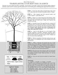 native plant guide planting guide sierra vista growers